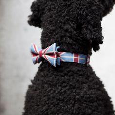 eu.Fab.com | Union Jack Bow Tie M