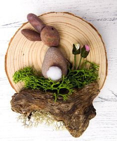 Hello! Thank you for looking at my product. These are my bunny rabbit pebble art log slices. They are created using pebbles with a cute little cotton tail attached, driftwood my parents forage from the shores of Cyprus (Paphos) and ship over to me and artificial moss. They are