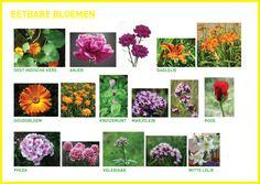 Eetbare bloemen
