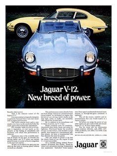 E-Type Jaguar, V12, Car Advert