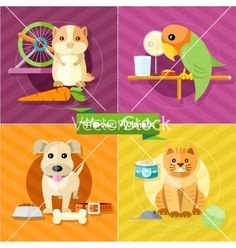Hamster parrot cat and dog vector by robuart on VectorStock®