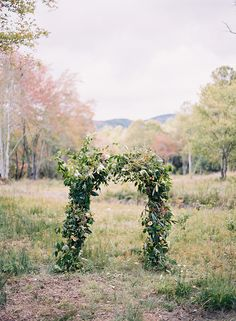 Gorgeous, natural, ceremony arch.