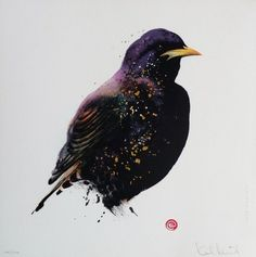 Starling by Karl Mårtens - Litografier « Edition Vulfovitch