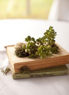 Créer une déco avec des plantes et un vieux livre