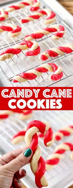 Peppermint Candy Cane Cookies taste like peppermint candy but are simply candy cane sugar cookies and are the best Christmas […] – Wanderlust Candy Cane Cookies, Sugar Cookies, Cake Cookies, Candy Cane Biscuits, Candy Canes, Christmas Sweets, Christmas Cookies, Christmas Recipes, Christmas Parties
