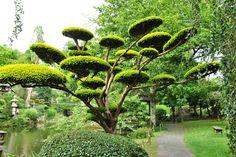 Японский Парк Молеврие (Le Parc Oriental De Maulévrier). Франция / Архимир / Архимир