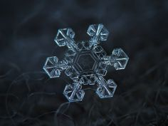 Alexey Kljatov's photographs of snowflakes are simply stunning.