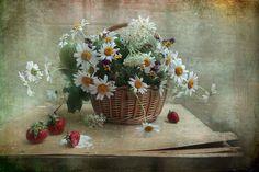 35PHOTO - Svetlana Ра - Отдохновение