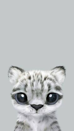 112 Best Cute Cat Phone Wallpapers Images Backgrounds Cat Phone