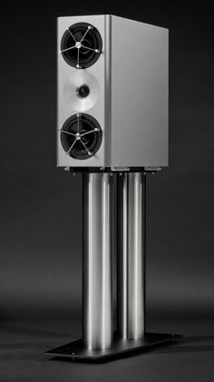 YG Acoustics Anat III module