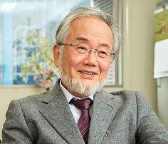 Nobel de Medicament par le japonese Yoshinori Ohsumi