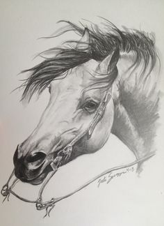 """Cutting horse"" 8""x10"" graphite"