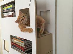 Design Katzenmöbel neu Abbild oder Ecdcffdfaeaad Cat Furniture Jpg
