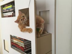 Design Katzenmöbel frisch Bild der Ecdcffdfaeaad Cat Furniture Jpg