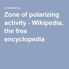 Zone of polarizing activity - Wikipedia, the free encyclopedia