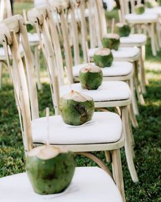 As guests arrived for the afternoon ceremony in the mangrove, they were met with fresh chilled coconut water on each chair. #WeddingIdeas #Unique #Coconut #Drinks #WeddingCeremony #WeddingGuestIdeas #WeddingDrinks | Martha Stewart Weddings - A Bohemian-Meets-Tropical Wedding at a Private Resort in Costa Rica Ceremony Seating, Beach Ceremony, Wedding Ceremony, Wedding Seating, Church Wedding, Fall Wedding, Rustic Wedding, Dream Wedding, Gypsy Wedding