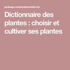 Dictionnaire des plantes : choisir et cultiver ses plantes