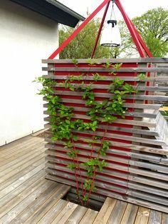 Cattis и Эйрас садового дизайна: играть с цветом в саду, и пусть дети будут с!