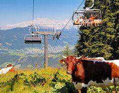 http://lacknerhof.at/de-ausflugsziele-salzburg.htm  Sommerurlaub im Salzburger Land. Urlaub im Sommer mit der Familie in Flachau.