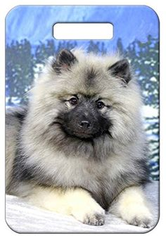 Set of 2 Keeshond Luggage Tags * You can get more details by clicking on the image.Note:It is affiliate link to Amazon.