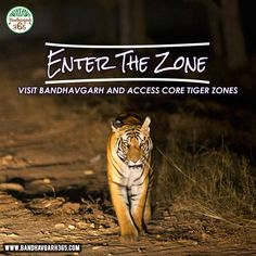 """""""Enter The Zone"""" Visit #Bandhavgarh And Access Core #Tiger Zones."""