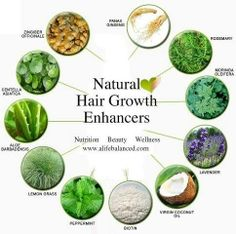 12 Natural Ways To Enhance Hair Growth And Thickness Add drops of peppermint, lavender and rosemary essential oils to the virgin coconut oil; massage into the scalp to stimulate hair growth. Pelo Natural, Natural Hair Tips, Natural Hair Styles, Natural Oil, Natural Shampoo, Natural Baby, Natural Living, Home Remedies For Hair, Natural Home Remedies