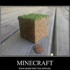 #Minecraft #Gamers