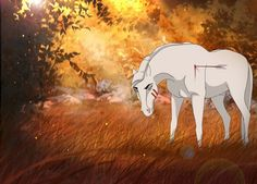 Glacier: Ugh, I hope someone finds me soon. This arrow is becoming unbearable. Horse Cartoon Drawing, Horse Drawings, Cartoon Drawings, Animal Drawings, Spirit The Horse, Spirit And Rain, Pretty Horses, Beautiful Horses, Spirit Drawing