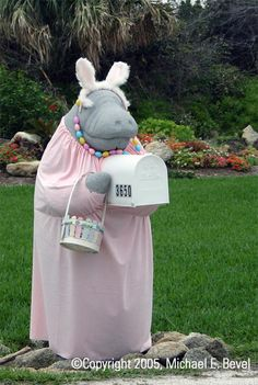 Easter Manatee mailbox in Daytona Beach, Florida. We have driven by this mailbox many times :) Funny Mailboxes, Home Mailboxes, Unique Mailboxes, Painted Mailboxes, Rural Mailbox, Mailbox Ideas, Florida Holiday, You've Got Mail, Daytona Beach