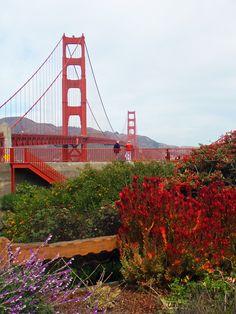 San Francisco #travel #California #smileshare
