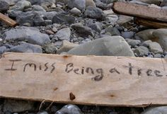 I want to write secret messages on beach driftwood ---- bring along a sharpie