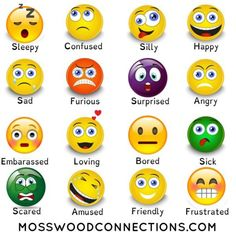 Feelings and Emotions Scavenger Hunt: A Social Skills Activity