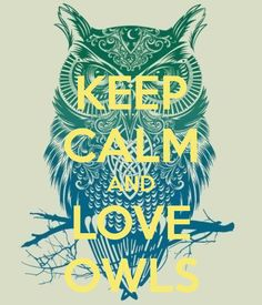 KEEP CALM AND LOVE OWLS