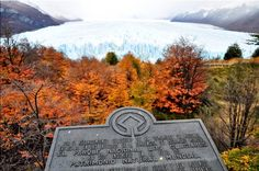 👣🍁👀 Pra quem quer saber como é visitar a Patagônia no Outono... uma paisagem indescritível das árvores vermelhas e amarelas combinando com o azul dos glaciares 😍. Foto tirada na entrada do Parque Nacional dos Glaciares Perito Moreno, um dos lugares mais lindos que estive e sem dúvida único no mundo! A geleira tem 5km de largura e 60m de altura 😳, e é uma das reservas de água doce mais importantes do mundo.