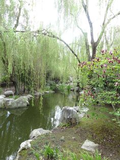 Chinese Friendship Gardens - Sydney pic taken by Carol Jones Carol Jones, Chinese Garden, Holiday Places, Visit Australia, Mother Nature, Places Ive Been, Sydney, Cool Pictures, Friendship