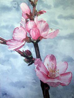 flor de cerezo.jpg (567×755)