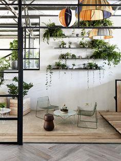 様々な植物を壁面棚のあちこちに。ボリュームあるグリーンは、お部屋のアクセントにもなり、とても豪華です。