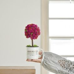 センニチコウという花は、ドライフラワーに向いている花です。その特徴を生かした生花の状態からドライフラワーになるトピアリーアレンジの作り方をご紹介します。 Topiary, My Photos, Lettering, Ohana, Drawing Letters, Brush Lettering