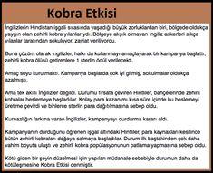 Kobra Etkisi Learn Turkish, Good Sentences, Galaxy Wallpaper, Trivia, Karma, Fun Facts, Insight, Psychology, Knowledge