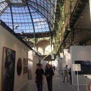 Art Paris Art Fair 2017 photo DECORAL 4