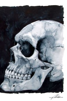 For Abbi:    Watercolour Skull by Paul Shubrook