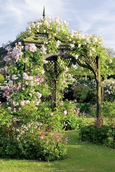 Incredible looking lush gazebo.....I really hope Papa Dean didn't tear all those vines off!!!!
