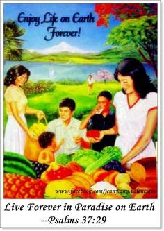 APPLE OF MY EYE JEHOVAH'S WITNESS - Google Search
