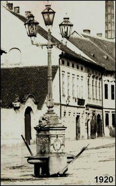Dolní Kounice 1920