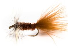 Wooly buggers have been around for a long time. I have found that in some cases wrapping the hackle dull side forward dry fly style gives the fly more fish inciting action.