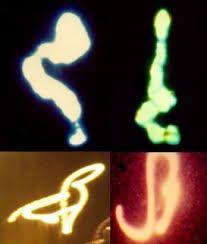 Resultado de imagen para seres de luz humanos