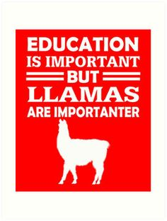 Llamas Are Importanter