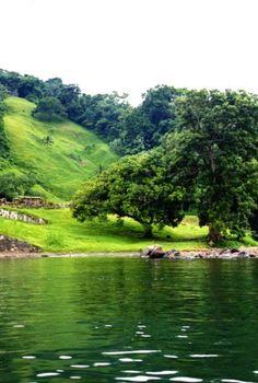 Backyard River with Fields