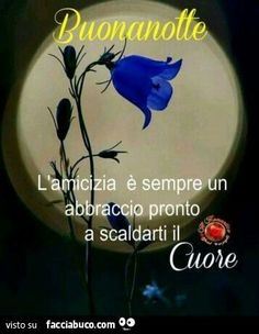 Good Night Wishes, Good Morning, Dolce, Smiley, Dreams, Google, Good Night, Messages, Frases