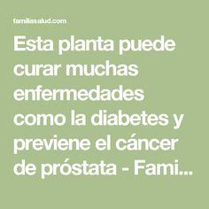 Esta planta puede curar muchas enfermedades como la diabetes y previene el cáncer de próstata - FamiliaSalud.com